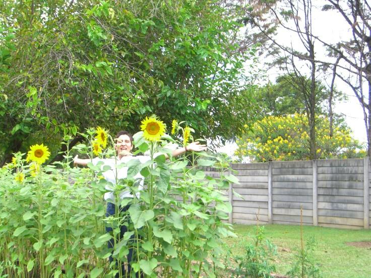 Ally & sunflowers