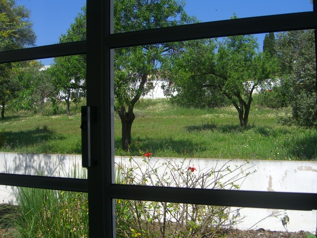 Fear masquerading as window frames