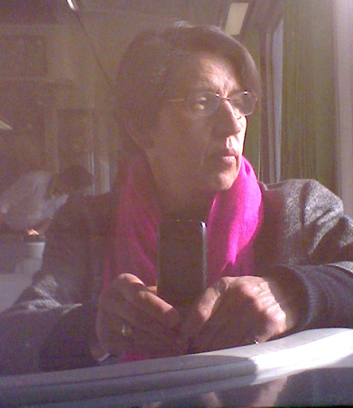 pink scarf selfie in train