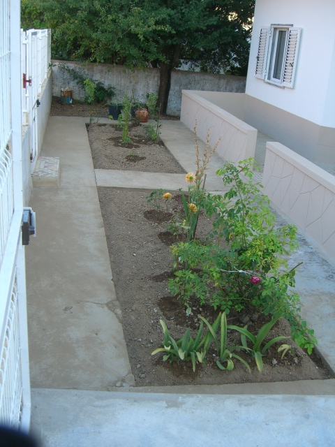 Weeded and re-dug flower beds. Office window in the right of the picture.