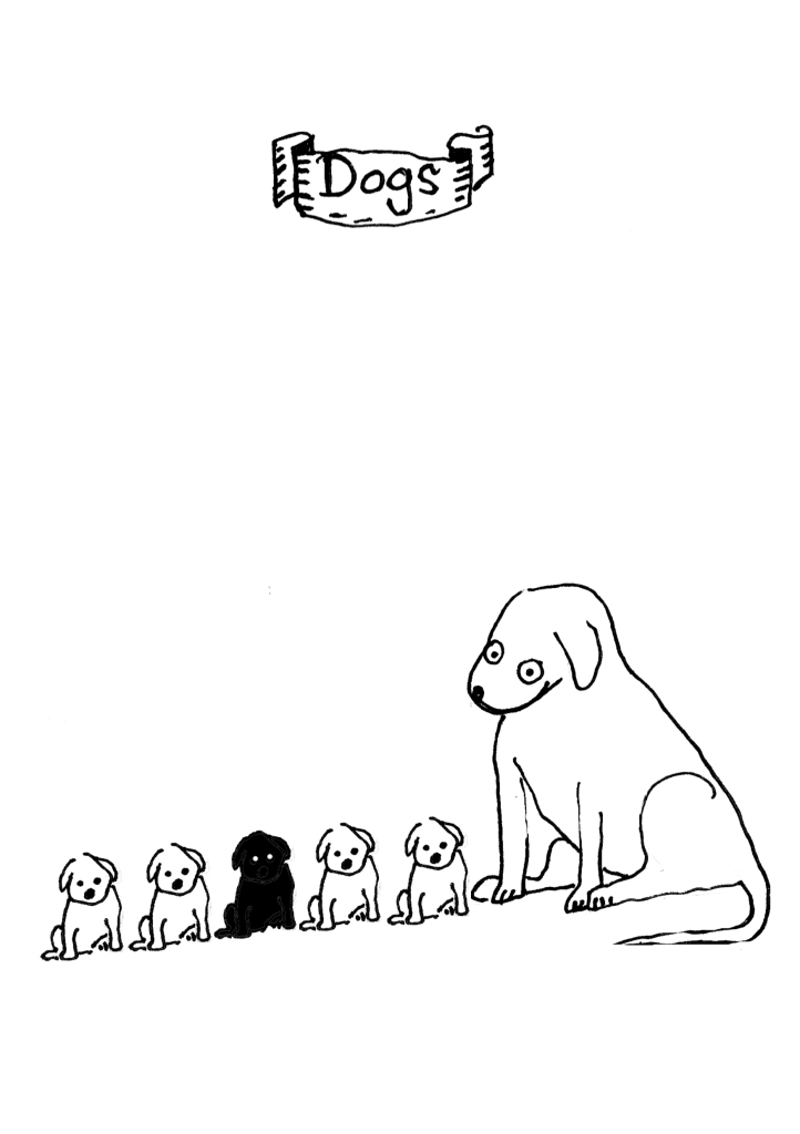 39-dogs