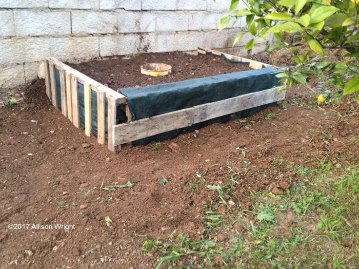 Raised vegetable bed made with discarded pallets